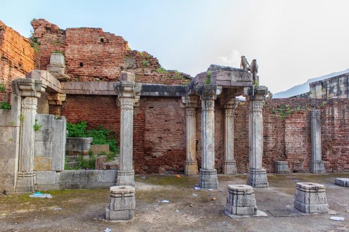 ruins of Champaner fort