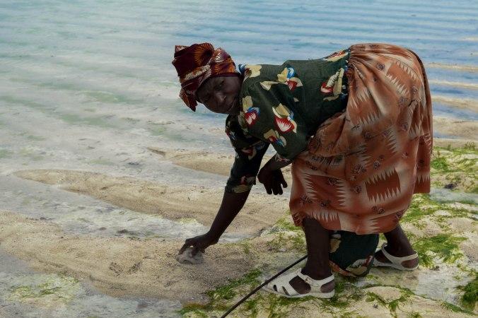 Reef_fishing@Nungwi_Zanzibar