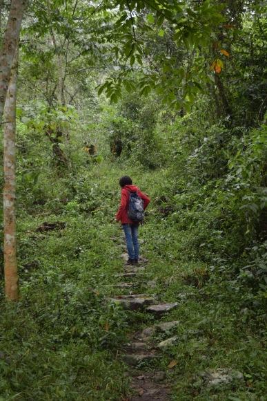Trek in Khonoma_Nagaland