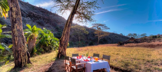 Lewa Safari Camp - activities - bush breakfast-17