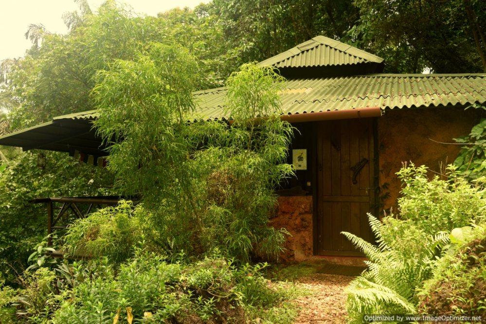Hornbill Cottage_Olaulim